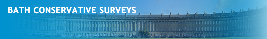 Bath Conservative Surveys